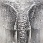 100x100 Bild Original Rimbo Elephant