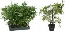 BAMBOO Dekopflanze inkl Topf 60 cm von Koopman