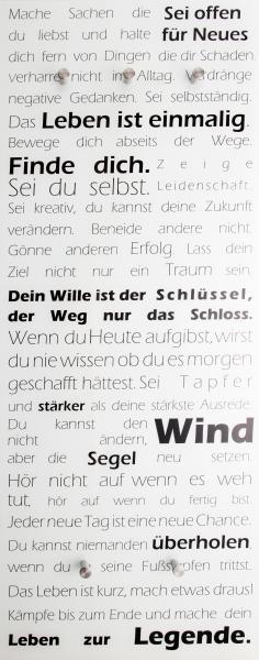 Glasgarderobe FELIX ca. 50x125 cm Motiv: Leben von Spiegelprofi